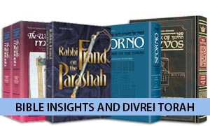Bible Insights and Divrei Torah